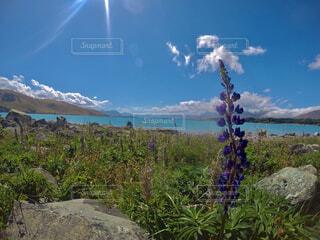 湖,海外,景色,ハイキング,デート