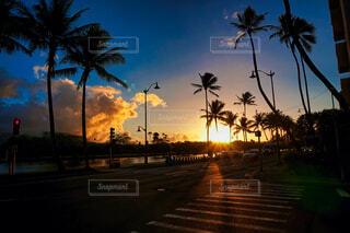 太陽,朝日,川,ハワイ,海外旅行,運河