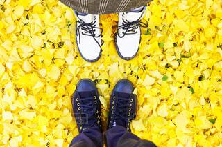 秋,靴,サンダル,黄色,イチョウ,コンバース,スニーカー,ランニングシューズ,スケート靴,一緒,履物,黄色の絨毯,秋コーデ,アウトドアシューズ,ウォーキングシューズ,ブート