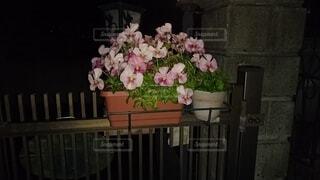 花,花瓶,バラ,薔薇,植木鉢,観葉植物,フラワーアレンジ,花屋,切り花