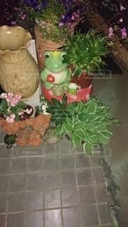 花,屋内,花束,花瓶,バラ,薔薇,植木鉢,観葉植物,草木