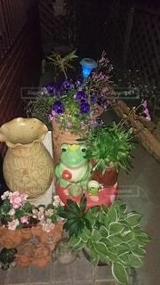 花,屋内,花束,花瓶,クリスマス,装飾,草木,漫画