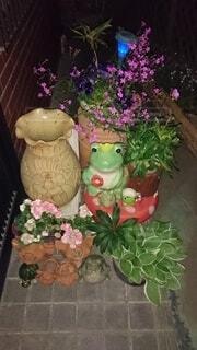 花,屋内,花束,花瓶,装飾,草木,漫画