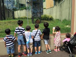 子どもの写真・画像素材[471966]