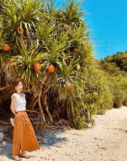 ヤシの木の隣に立っている人の写真・画像素材[4386613]