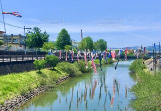 川面に映る鯉のぼりの写真・画像素材[4388156]