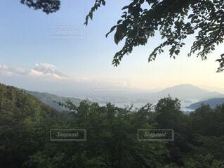 自然,空,富士山,屋外,雲,山,樹木,眺め