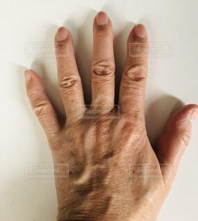 手,指,人,爪,血管,使用前,静脈,手のシワ,手のシミ,年寄りの手