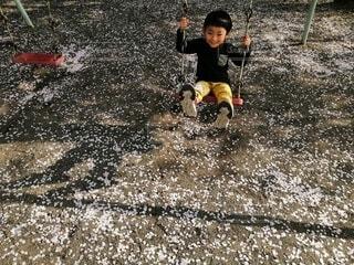 子ども,風景,桜,屋外,ブランコ,花びら,人物,地面,幼児,少年,若い,花びらの絨毯,散った花びら