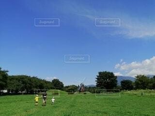 空,屋外,緑,草原,雲,親子,風車,景色,草,大自然,樹木,男の子,遊び場,草木,お出かけ