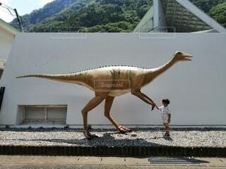 動物,屋外,幼児,夏休み,男の子,博物館,恐竜,お出かけ,わんぱく