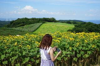 ひまわり畑に立つ女性の写真・画像素材[4677116]