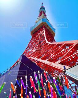 東京タワーに向かって泳ぐ鯉のぼりの写真・画像素材[4388769]