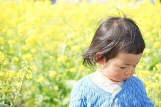 子ども,風景,屋外,黄色,菜の花,少女,人物,人,赤ちゃん,風,少年,人間の顔