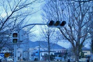 空,冬,雪,屋外,樹木,明るい,通り,交通