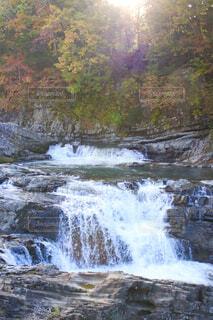 自然,秋,屋外,川,水面,滝,樹木