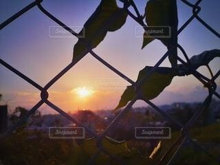 沖縄 ワイヤー越しの夕日の写真・画像素材[4374490]