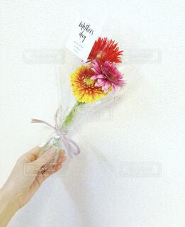 母の日にもらった素敵なお花の写真・画像素材[4387183]