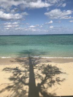 海に伸びるシルエットの写真・画像素材[4386845]