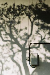 自然,空,建物,木,屋外,影,樹木,壁,ブラウン,コントラスト,マンション,温もり