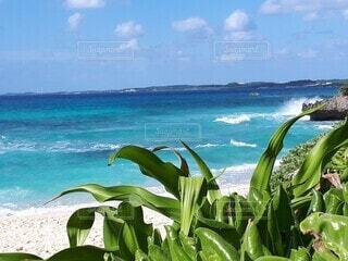 自然,海,空,屋外,緑,ビーチ,雲,水面,海岸,日中
