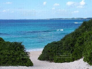 自然,風景,海,空,屋外,ビーチ,雲,水面,海岸,樹木,眺め