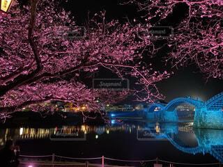 都市の夜景の写真・画像素材[4376980]