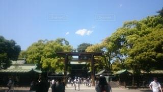 自然,風景,空,屋外,神社,雲,樹木,人物,人,旅行