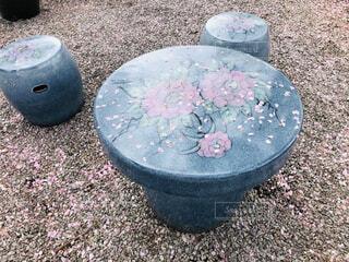 桜,屋外,ピンク,ベンチ,花びら,テーブル,木の下