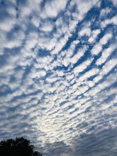 雲の群の写真・画像素材[4396460]