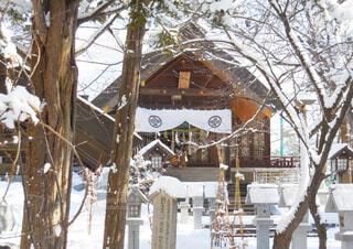 風景,建物,冬,雪,屋外,神社,winter,信濃神社