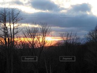風景,空,屋外,太陽,雲,夕暮れ,影,日没,木々,樹木,逆光,サンセット,沈む,日,陽