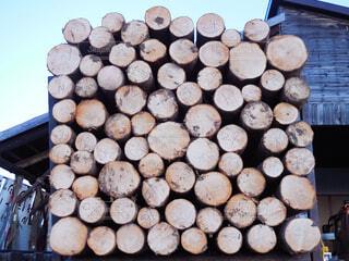 木,DIY,断面,木材,材木,丸太,wood