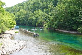 夏の千歳川の写真・画像素材[4409685]