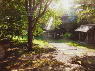 北海道開拓の村 旧信濃神社境内の写真・画像素材[4801038]