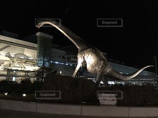 動物,ライトアップ,像,福井,恐竜,モニュメント,模型,福井駅,駅前広場