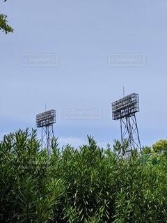 空,屋外,緑,青空,樹木,照明,快晴,野球場,日中
