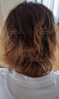 金髪の写真・画像素材[4411609]