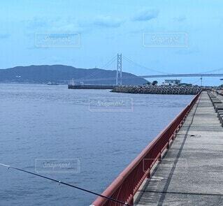 海釣り公園の写真・画像素材[4544045]