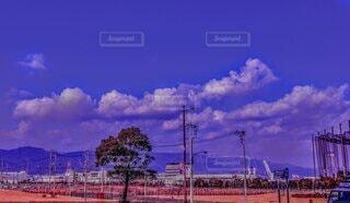 一本の木と雲の写真・画像素材[4706578]