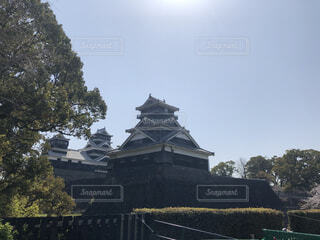 風景,空,屋外,緑,雲,観光地,樹木,熊本,熊本城,寺