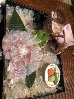 食べ物,魚,釣り,刺身,海鮮,新鮮,鯛,採れたて,ざうお,取れたて,座うお