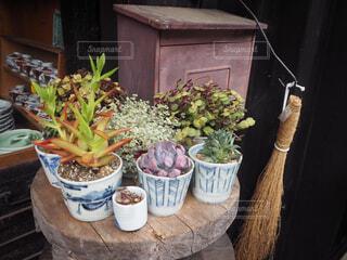 野菜,観葉植物,草木,ポット