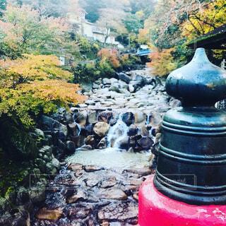 自然,春,秋,橋,紅葉,屋外,川,山,滝,樹木,岩,森林浴,渓谷
