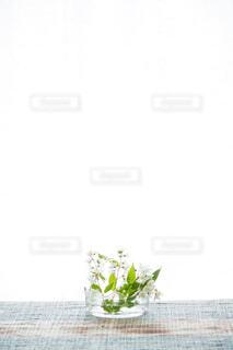 花,緑,植物,白,水,透明,ガラス,光,背景,テーブル,美しい,眩しい,硝子,観葉植物,器,明るい,コピースペース,ポジティブ,草木,小枝,クロス,姫ウツギ,うち串さん草木