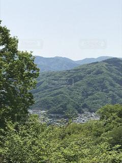 自然,風景,空,屋外,山,樹木,草木