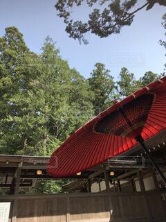 日本文化を象徴する和傘の写真・画像素材[4384857]