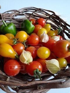 手作りの蔓かごに赤や黄色、緑の自家製夏野菜をのせての写真・画像素材[4672085]