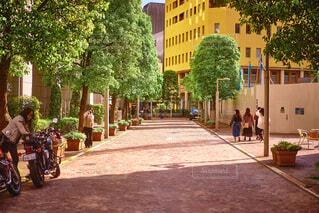 建物,屋外,樹木,都会,地面,通り,イタリア街,草木,汐留駅