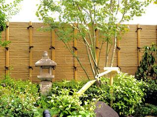 日本庭園の写真・画像素材[4391396]
